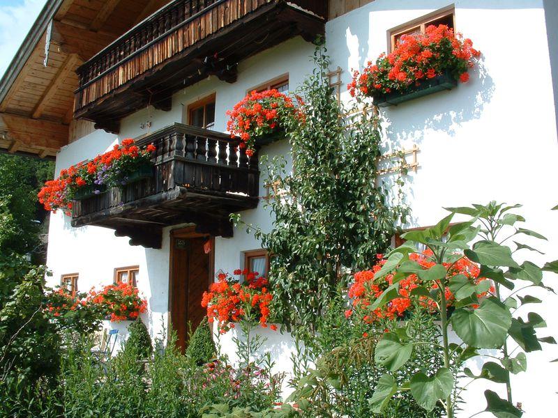 22367093-Ferienwohnung-5-Aschau im Chiemgau-800x600-2
