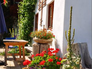 22367093-Ferienwohnung-5-Aschau im Chiemgau-300x225-4