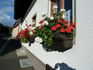 21203221-Ferienwohnung-2-Bad Brückenau-300x225-1