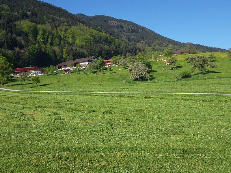 92631-Ferienwohnung-4-Bad Feilnbach-800x600-2