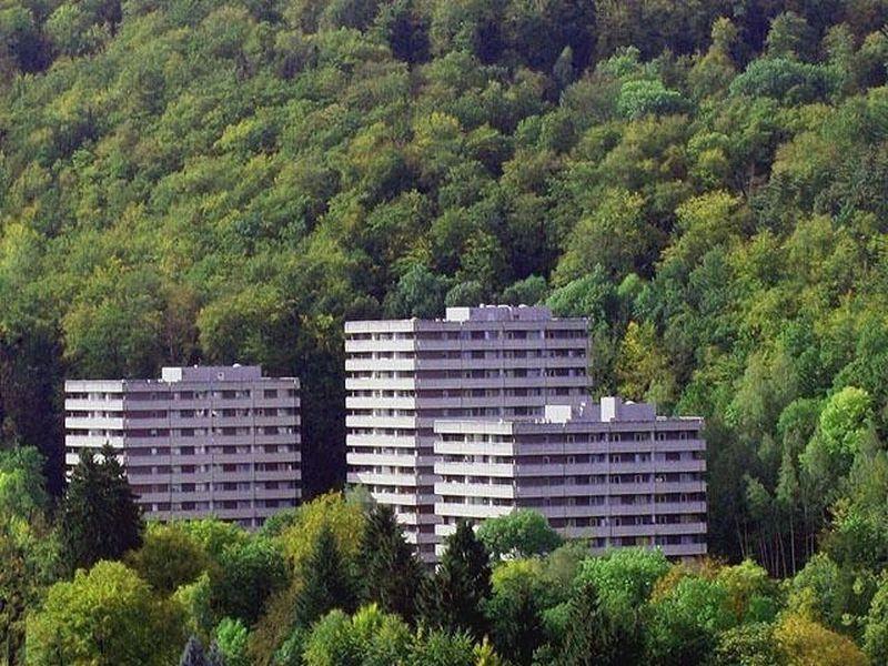 19833181-Ferienwohnung-2-Bad Harzburg-800x600-1