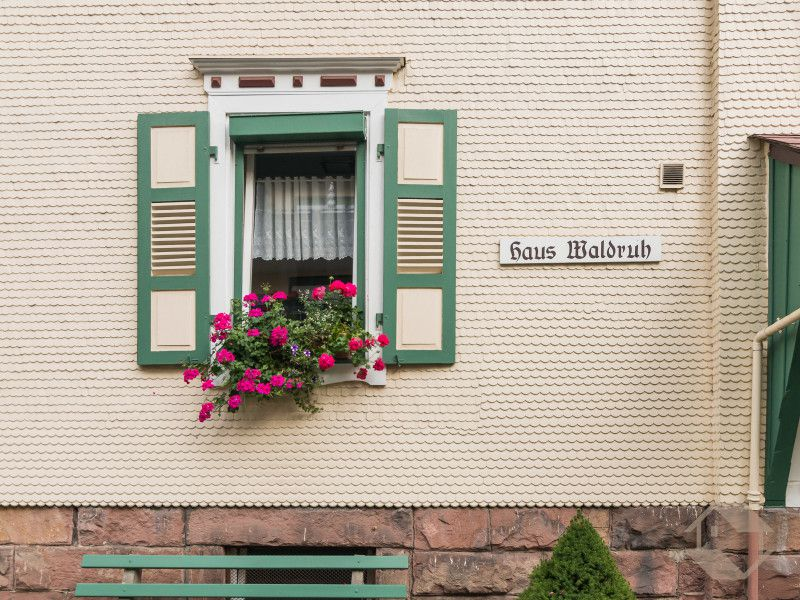 19324435-Ferienwohnung-4-Bad Herrenalb-800x600-3