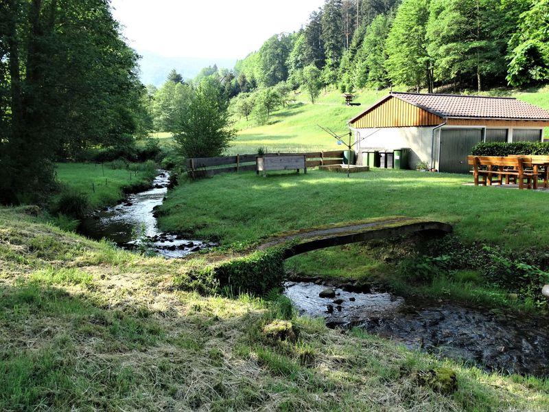 21471505-Ferienwohnung-2-Bad Herrenalb-800x600-1