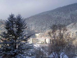 22264873-Ferienwohnung-5-Bad Herrenalb-300x225-2