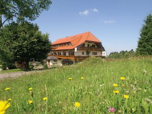 Ferienwohnung für 3 Personen (57 m²) ab 81 € in Bad Peterstal-Griesbach