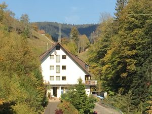 Ferienwohnung für 4 Personen ab 81 € in Bad Peterstal-Griesbach