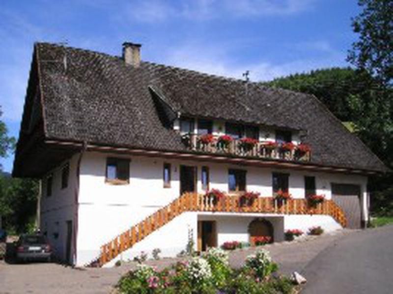 22262787-Ferienwohnung-5-Bad Peterstal-Griesbach-800x600-1