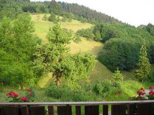 22262787-Ferienwohnung-5-Bad Peterstal-Griesbach-300x225-3