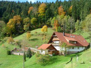 Ferienwohnung für 4 Personen (60 m²) ab 41 € in Bad Rippoldsau-Schapbach