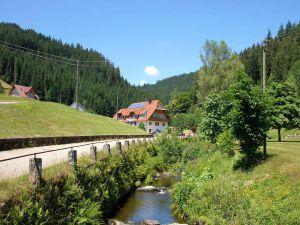 Ferienwohnung für 6 Personen (75 m²) ab 61 € in Bad Rippoldsau-Schapbach