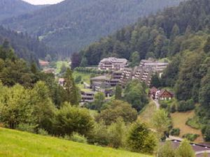 Ferienwohnung für 6 Personen (80 m²) ab 56 € in Bad Rippoldsau-Schapbach