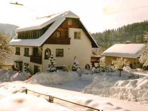 21633835-Ferienwohnung-3-Bad Wildbad Im Schwarzwald-300x225-2