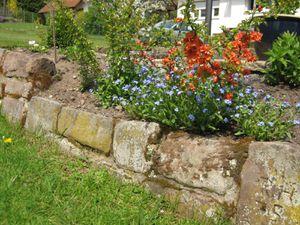 21633835-Ferienwohnung-3-Bad Wildbad Im Schwarzwald-300x225-14