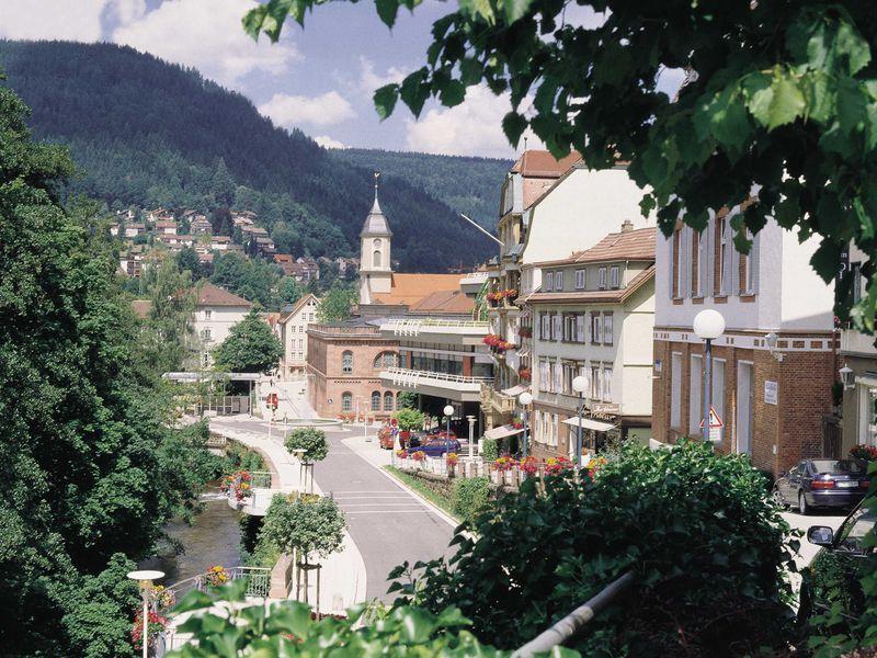 21633835-Ferienwohnung-3-Bad Wildbad Im Schwarzwald-800x600-20