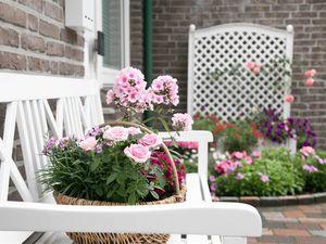 19326651-Ferienwohnung-4-Bad Zwischenahn-300x225-7