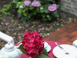 19326653-Ferienwohnung-4-Bad Zwischenahn-300x225-16