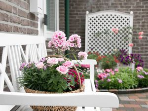 19326653-Ferienwohnung-4-Bad Zwischenahn-300x225-8