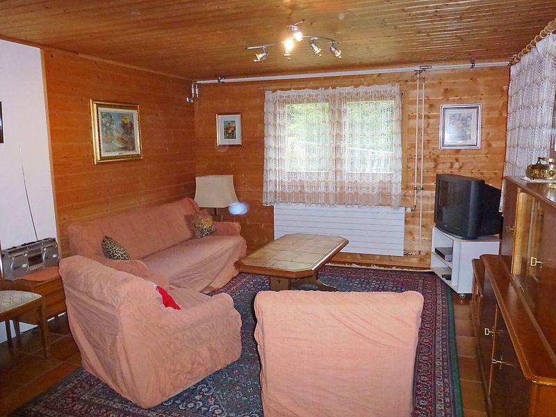 435997-Ferienwohnung-4-Bedretto-800x600-5