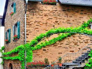 Ferienwohnung für 2 Personen (40 m²) in Beilstein
