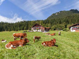 73245-Ferienwohnung-4-Berchtesgaden-300x225-5
