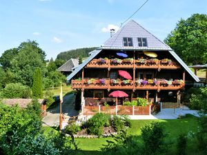 Ferienwohnung für 2 Personen (42 m²) ab 49 € in Bernau (Waldshut)