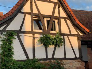 Ferienwohnung für 4 Personen (65 m²) ab 85 € in Birkweiler