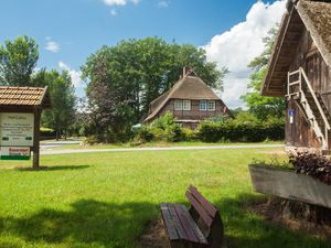 Ferienwohnung für 4 Personen (50 m²) ab 66 € in Bispingen