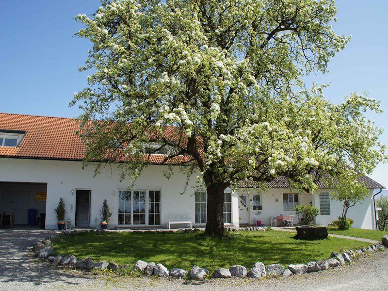 19061137-Ferienwohnung-4-Bodolz-800x600-0