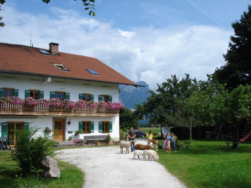 18134553-Ferienwohnung-4-Brannenburg-800x600-0