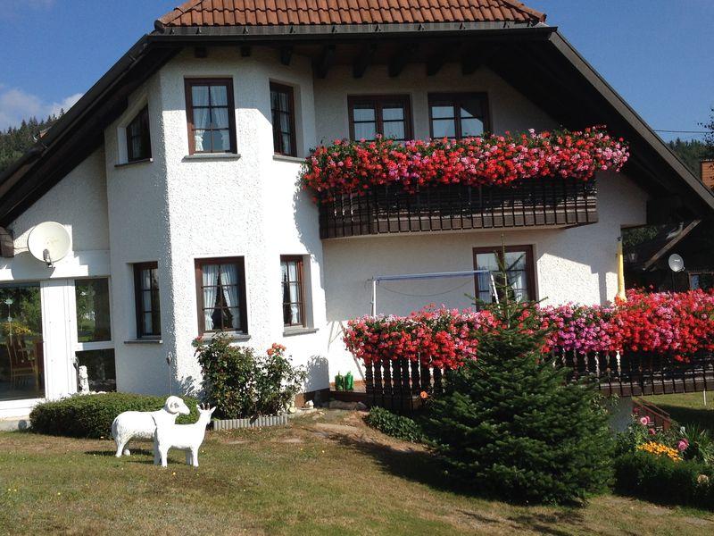 21472675-Ferienwohnung-4-Dachsberg-800x600-0