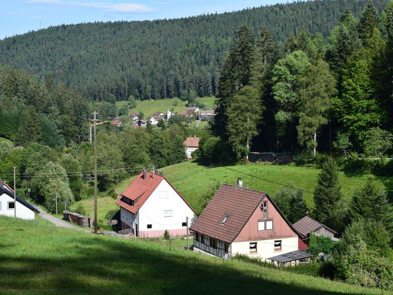 19249576-Ferienwohnung-2-Enzklösterle-800x600-4