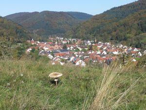 21745005-Ferienwohnung-2-Eußerthal-300x225-3
