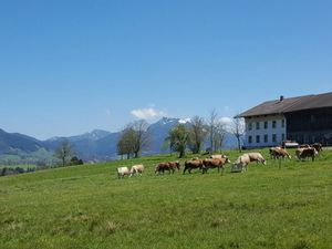 Ferienwohnung für 6 Personen (47 m²) ab 75 € in Fischbachau