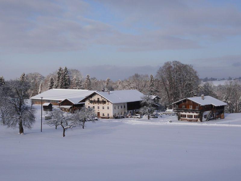 19273689-Ferienwohnung-4-Frasdorf-800x600-2