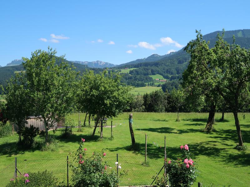 18808108-Ferienwohnung-3-Frasdorf-800x600-5