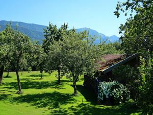 18808108-Ferienwohnung-3-Frasdorf-300x225-6
