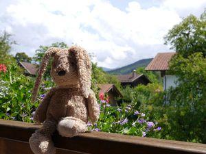 78411-Ferienwohnung-3-Frasdorf-300x225-4