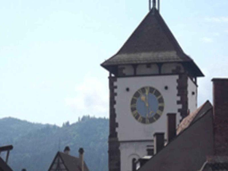 18775960-Ferienwohnung-2-Freiburg im Breisgau-800x600-6