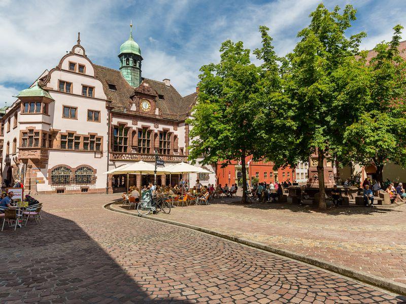 18807321-Ferienwohnung-6-Freiburg im Breisgau-800x600-11
