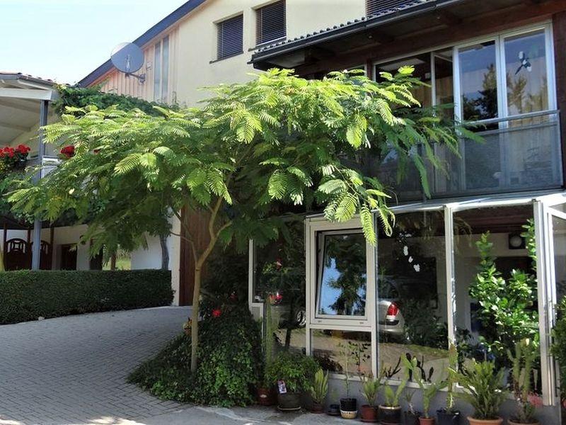21919513-Ferienwohnung-5-Freiburg im Breisgau-800x600-7