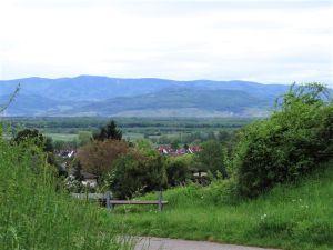 21919513-Ferienwohnung-5-Freiburg im Breisgau-300x225-11