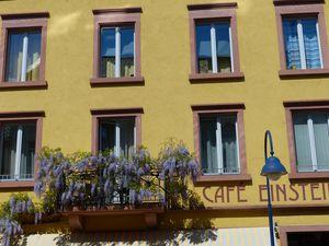 Ferienwohnung für 4 Personen (50 m²) ab 65 € in Freiburg im Breisgau