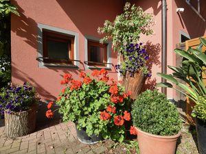 19341632-Ferienwohnung-6-Freiburg im Breisgau-300x225-26