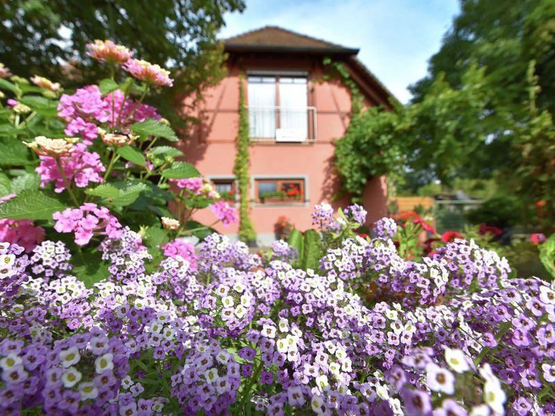 19341632-Ferienwohnung-6-Freiburg im Breisgau-800x600-34