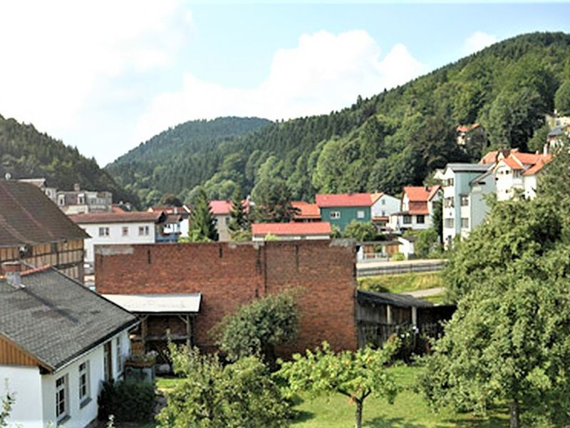 17888961-Ferienwohnung-4-Friedrichroda-800x600-1