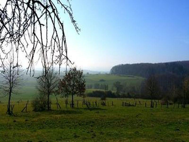 18808599-Ferienwohnung-2-Fritzlar-800x600-1