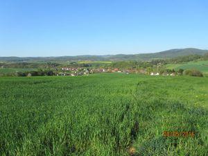 21676959-Ferienwohnung-3-Gemünden (Wohra)-300x225-5