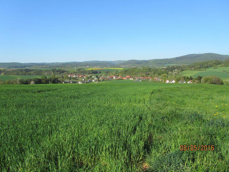 21676959-Ferienwohnung-3-Gemünden (Wohra)-800x600-5