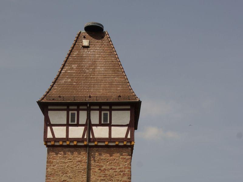 19188828-Ferienwohnung-6-Gernsbach-800x600-5