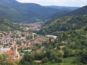22267763-Ferienwohnung-2-Gernsbach-300x225-19